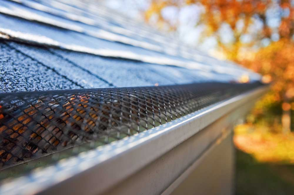 Gutter Cleaning Services in Sydney
